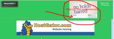 bekerja secara online dengan klik iklan di paidverts